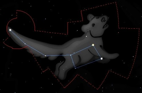 petit ours constellation